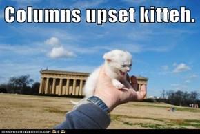 Columns upset kitteh.