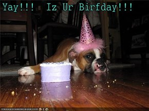 Yay!!!  Iz Ur Birfday!!!