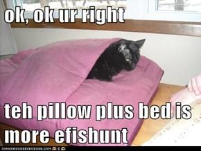 ok, ok ur right  teh pillow plus bed is more efishunt