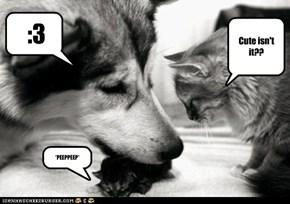 Cute isn't it??