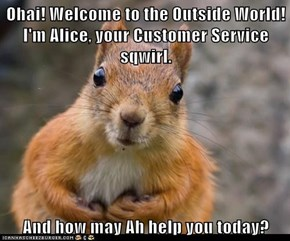 Ohai! Welcome to the Outside World!                 I'm Alice, your Customer Service sqwirl.  And how may Ah help you today?