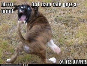Mrrrr...             DAT dam tale gotz a mind  ov itz OWN!!