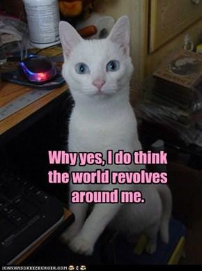 Why yes, I do think the world revolves around me.