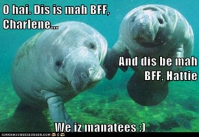 O hai. Dis is mah BFF,                    Charlene...                                              And dis be mah BFF, Hattie We iz manatees :)