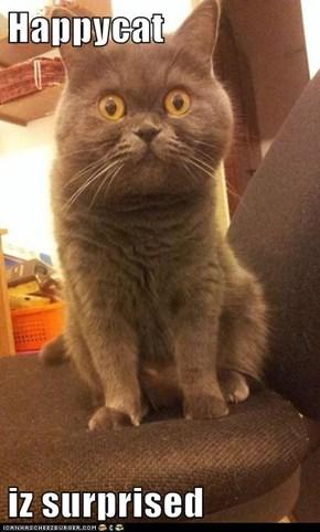 Happycat  iz surprised