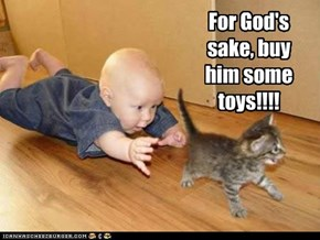 For God's sake, buy him some toys!!!!