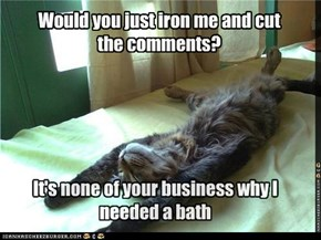 Would you just iron me and cut the comments?