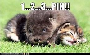1...2...3...PIN!!