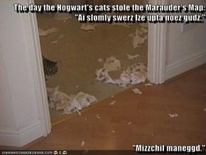 "The day the Hogwart's cats stole the Marauder's Map: ""Ai slomly swerz Ize upta noez gudz.""  ""Mizzchif maneggd."""