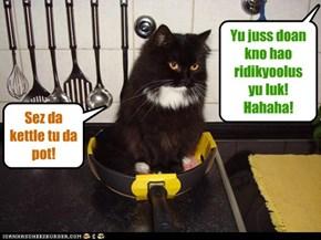 Doan be laffin at kitteh!
