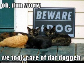 oh, dun worry  we took care of dat doggeh