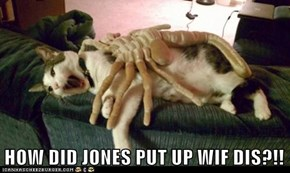 HOW DID JONES PUT UP WIF DIS?!!
