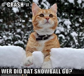 #*CRASH*#  WER DID DAT SNOWBALL GO?