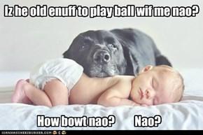 Iz he old enuff to play ball wif me nao?