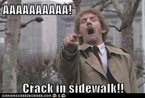 AAAAAAAAAA!  Crack in sidewalk!!