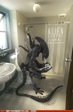 I'm poopin'!