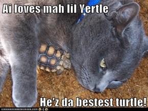 Ai loves mah lil Yertle  He'z da bestest turtle!