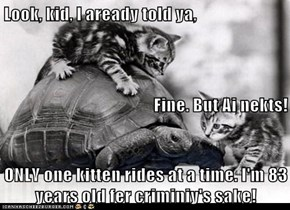 Look, kid, I aready told ya, Fine. But Ai nekts! ONLY one kitten rides at a time. I'm 83 years old fer criminiy's sake!