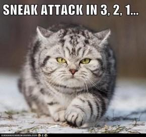 SNEAK ATTACK IN 3, 2, 1...