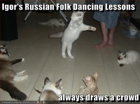 Igor's Russian Folk Dancing Lessons  always draws a crowd