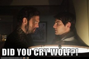 DID YOU CRY WOLF?!