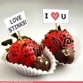 Epicute: Sweet Stinkbugs