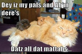 Dey iz my pals and Ah'm dere's  Datz all dat mattahs...