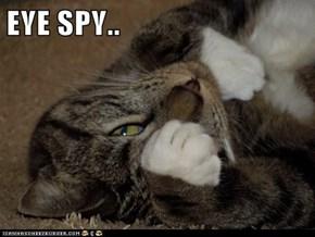 EYE SPY..