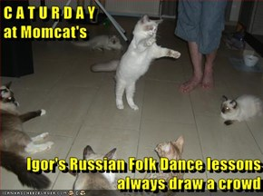 C A T U R D A Y                                                        at Momcat's  Igor's Russian Folk Dance lessons always draw a crowd