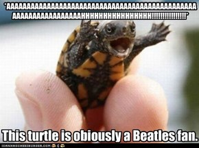 This turtle is obviously a Beatles fan.