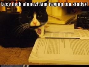 Leev meh alonez! Aim twying too studyz!