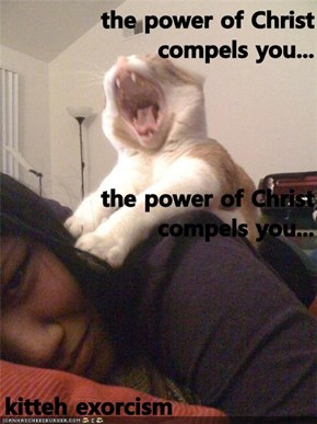 the power of Christ compels you... the power of Christ compels you... kitteh exorcism