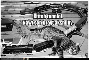 Kitteh tunnlol.