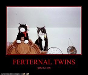 FERTERNAL TWINS