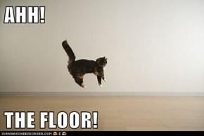 AHH!  THE FLOOR!