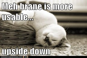 Meh brane is more usable...