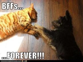 BFFs...  ...FOREVER!!!