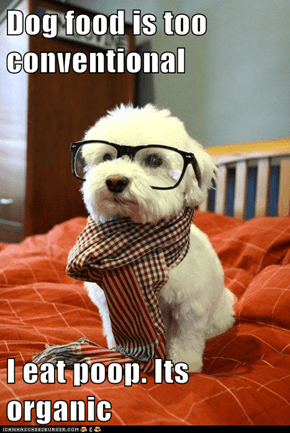 Hipster Dog: Tastes as Good as It Looks