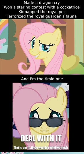 Deal With It: Fluttershy