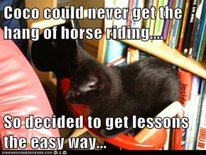 Coco could never get the hang of horse riding....  So decided to get lessons the easy way...