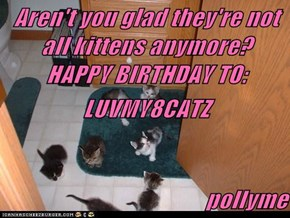 Aren't you glad they're not all kittens anymore?   HAPPY BIRTHDAY TO: LUVMY8CATZ                                                pollyme