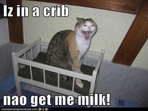 Iz in a crib  nao get me milk!