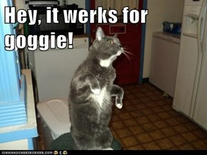 Hey, it werks for goggie!