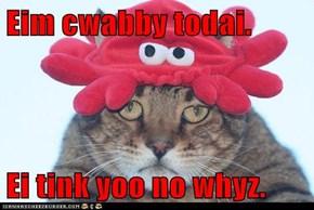 Eim cwabby todai.  Ei tink yoo no whyz.