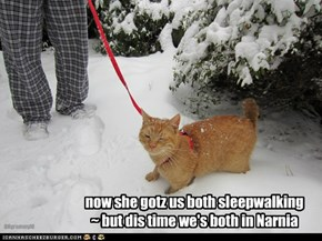 now she gotz us both sleepwalking~ but dis time we's both in Narnia