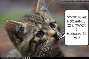 THINKIN KITTEH DOAN WANTS 2 BE MORONATD