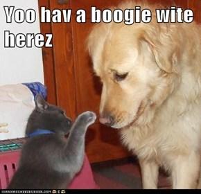 Yoo hav a boogie wite herez