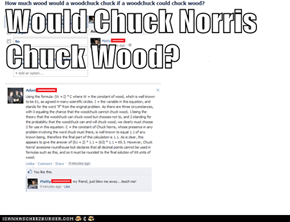 Would Chuck Norris Chuck Wood?