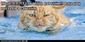 What!?!?!?!? can i lilith not swim!? have you not seen a cat swim