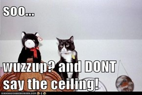 soo...  wuzzup? and DONT say the ceiling!